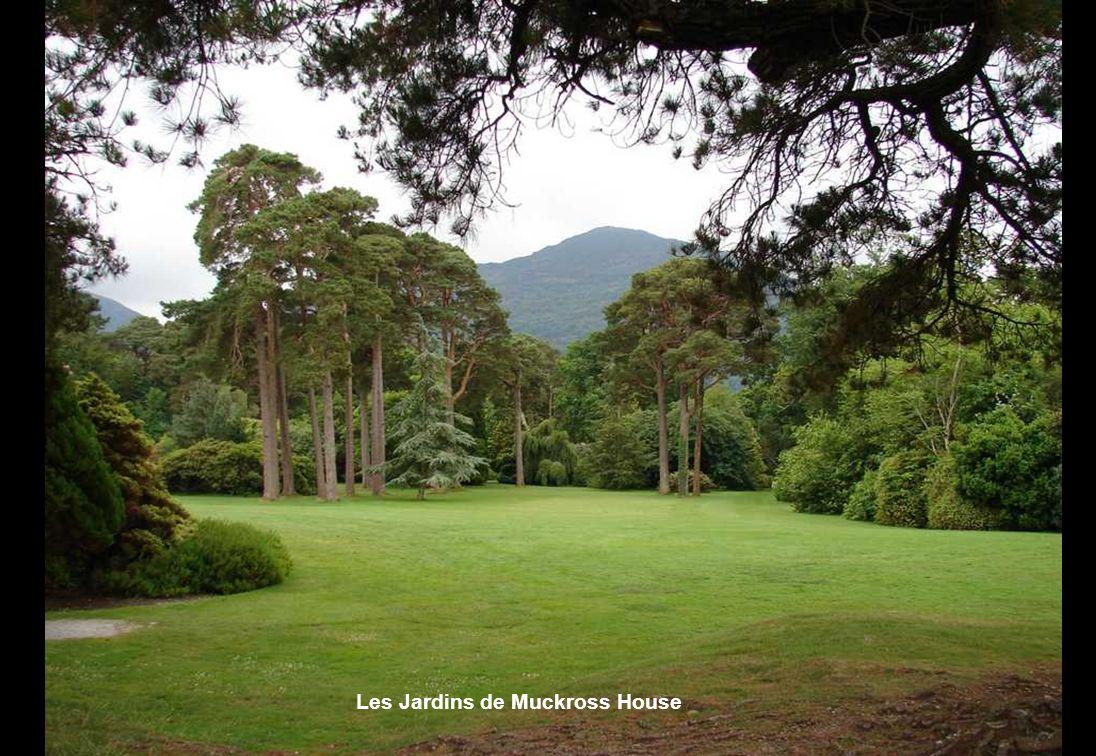 La péninsule dIveragh Lanneau du Kerry Muckross House Un manoir victorien et romantique Depuis le XII°s; la suzeraineté anglaise sur lIrlande est cons