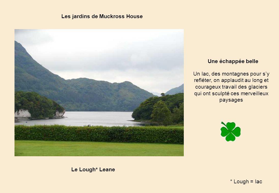 Une échappée belle Le Lough* Leane Les jardins de Muckross House Un lac, des montagnes pour sy refléter, on applaudit au long et courageux travail des glaciers qui ont sculpté ces merveilleux paysages * Lough = lac