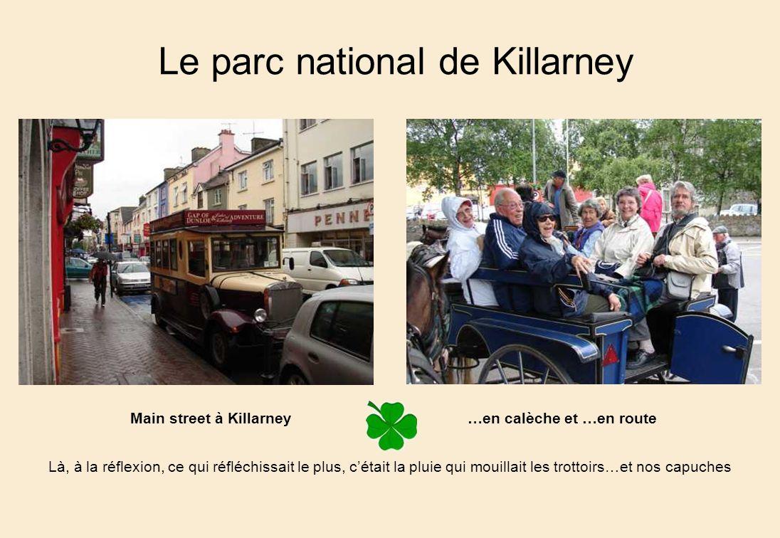 Le parc national de Killarney Là, à la réflexion, ce qui réfléchissait le plus, cétait la pluie qui mouillait les trottoirs…et nos capuches Main street à Killarney…en calèche et …en route