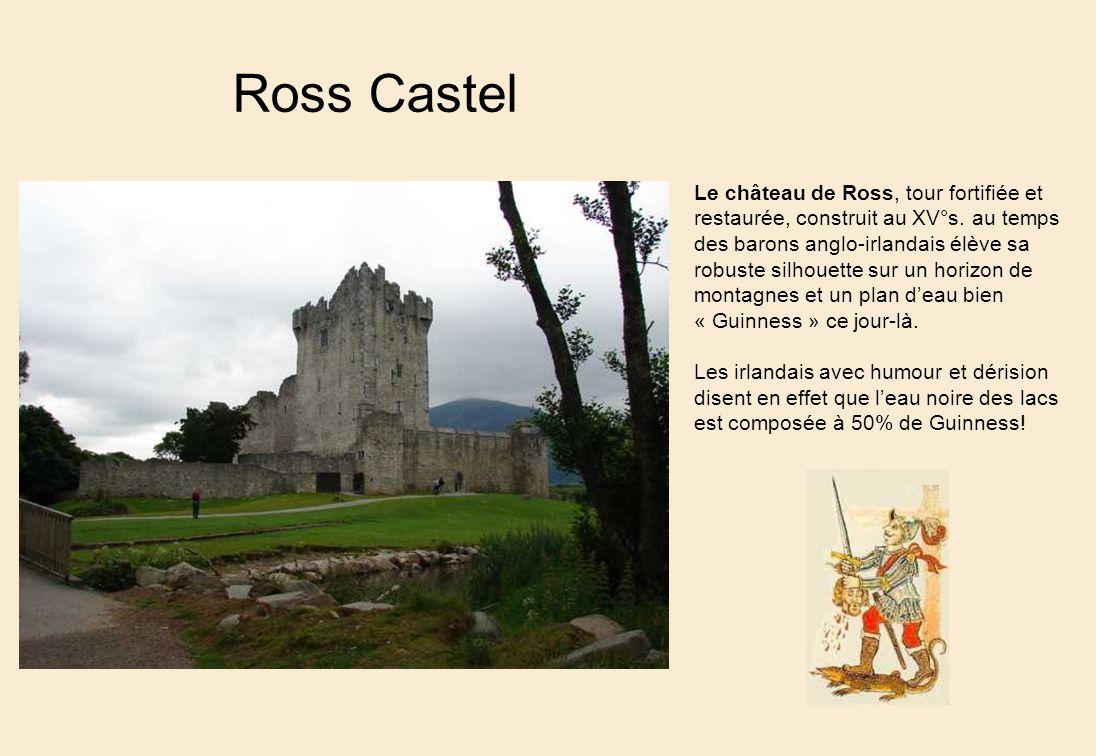 Ross Castel Le château de Ross, tour fortifiée et restaurée, construit au XV°s.