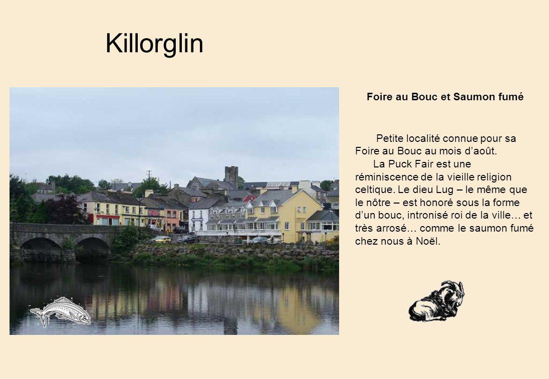 Killorglin Petite localité connue pour sa Foire au Bouc au mois daoût.
