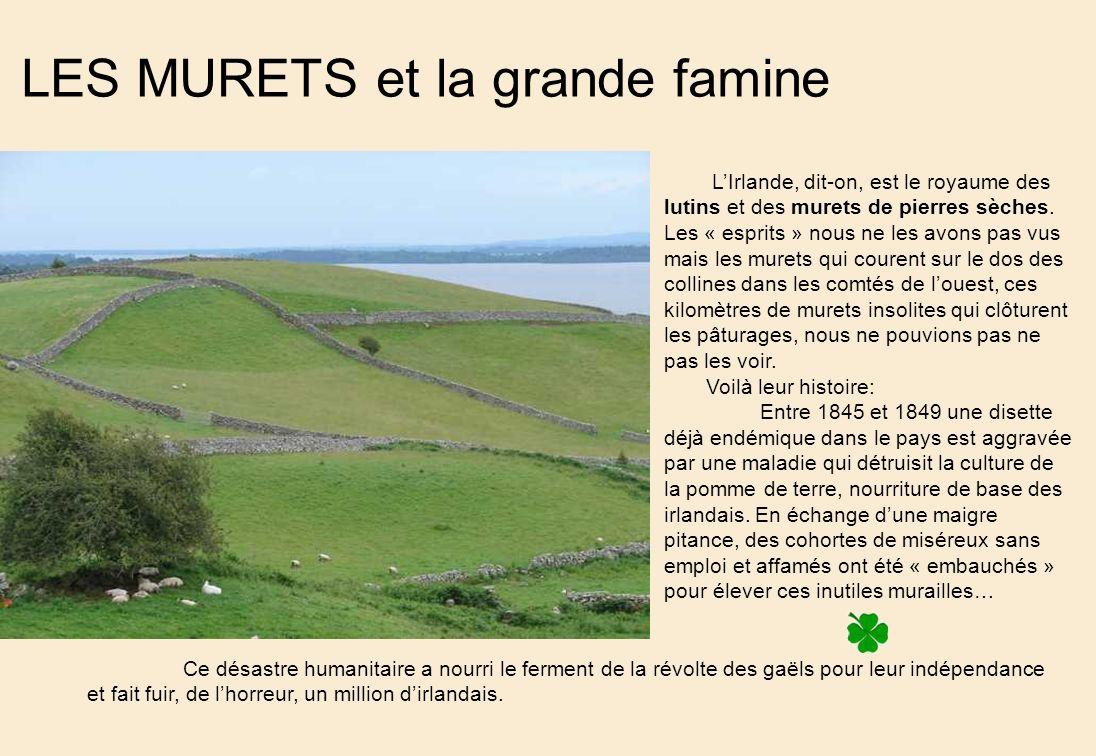 LES MURETS et la grande famine LIrlande, dit-on, est le royaume des lutins et des murets de pierres sèches.