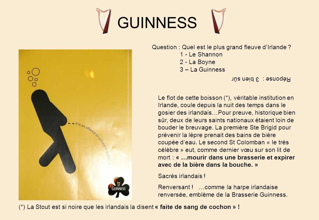 DUBLIN Temple Bar : portraits célèbresEn allant au « Porter House » Au bord dune baie du même nom, à cheval sur la Liffey aussi noire quune Guinness…