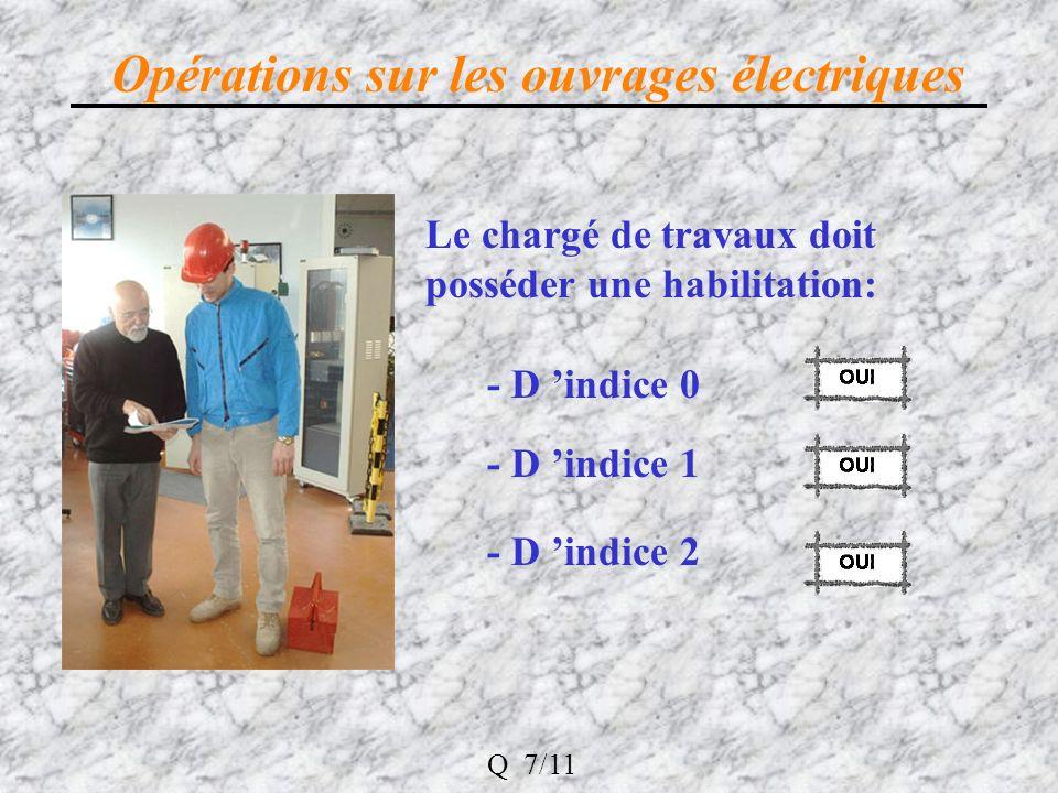 Opérations sur les ouvrages électriques Le chargé de travaux doit posséder une habilitation: - D indice 0 - D indice 1 - D indice 2 Q 7/11