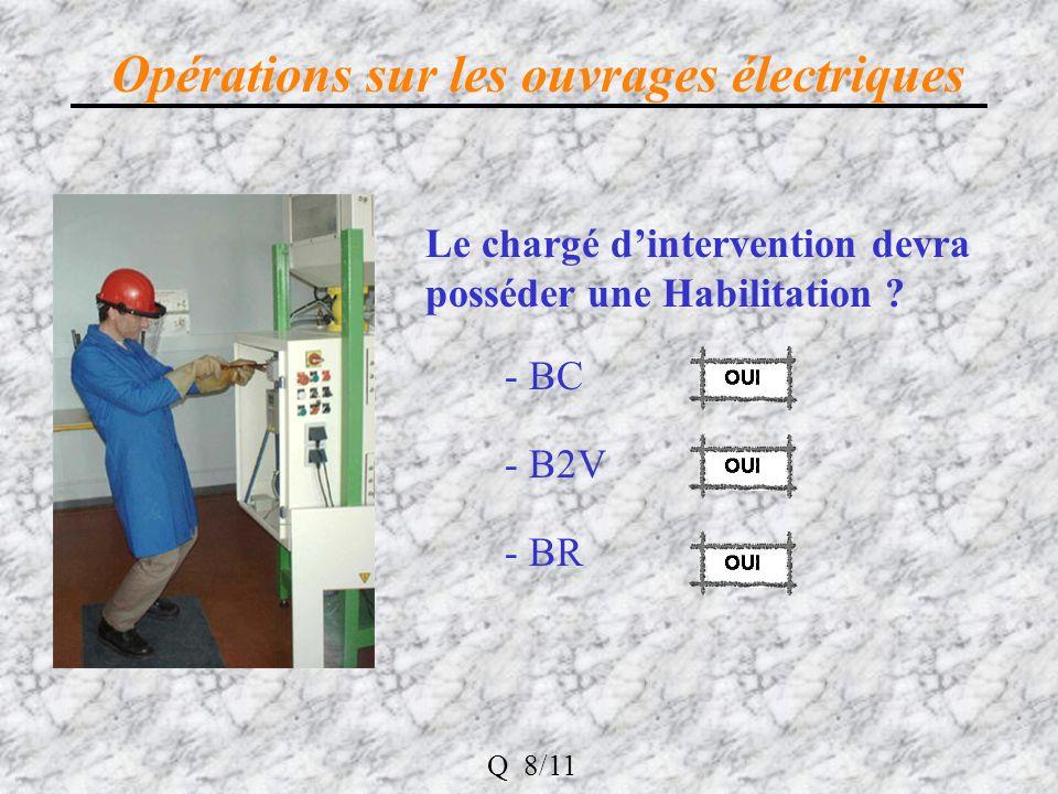 Opérations sur les ouvrages électriques Le chargé dintervention devra posséder une Habilitation .