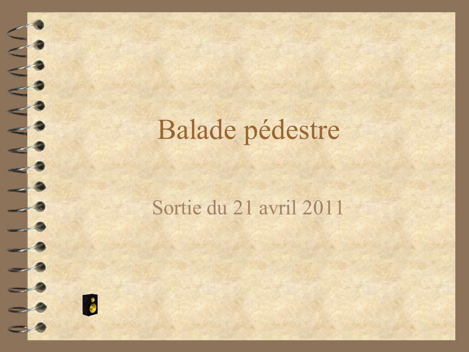 Balade pédestre Sortie du 21 avril 2011