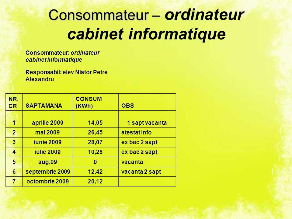 Consommateur – Consommateur – ordinateur cabinet informatique Consommateur: ordinateur cabinet informatique Responsabil: elev Nistor Petre Alexandru NR.