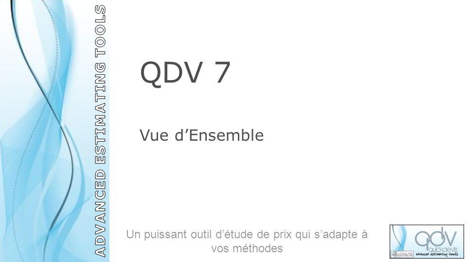 QDV 7 Vue dEnsemble Un puissant outil détude de prix qui sadapte à vos méthodes