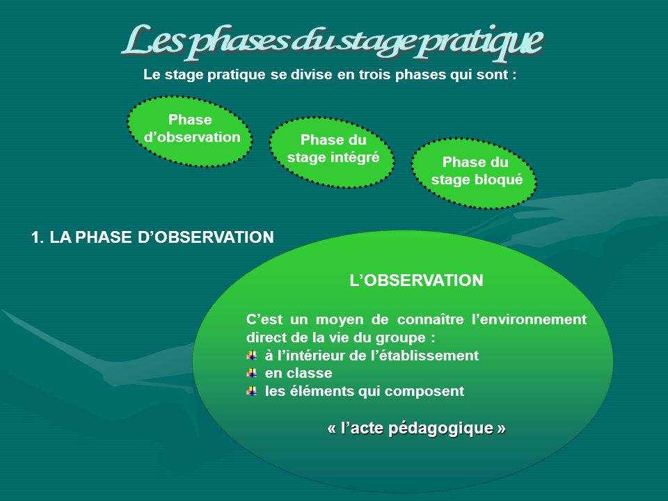 Le stage pratique se divise en trois phases qui sont : Phase dobservation Phase du stage intégré Phase du stage bloqué 1. LA PHASE DOBSERVATION LOBSER