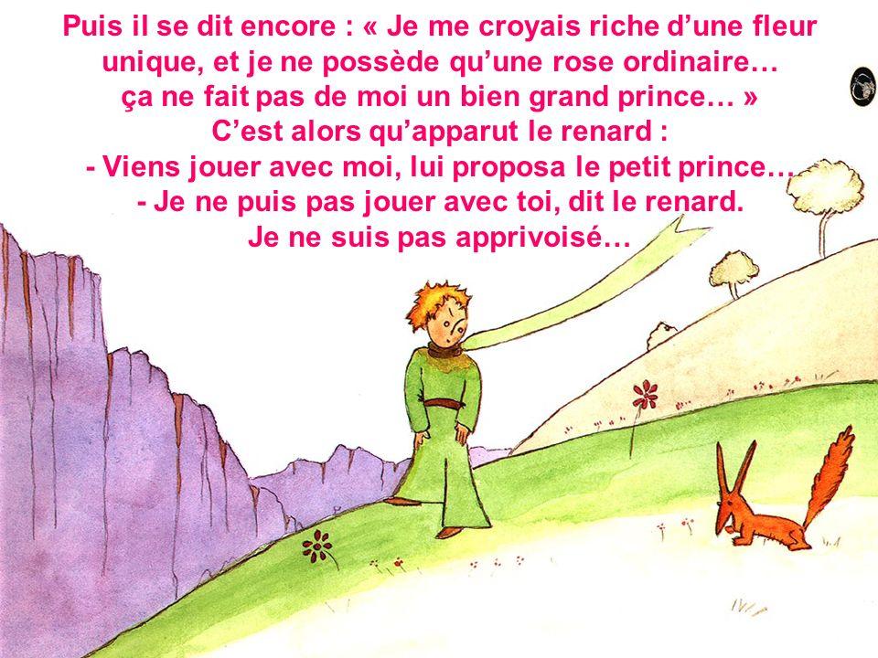 Puis il se dit encore : « Je me croyais riche dune fleur unique, et je ne possède quune rose ordinaire… ça ne fait pas de moi un bien grand prince… » Cest alors quapparut le renard : - Viens jouer avec moi, lui proposa le petit prince… - Je ne puis pas jouer avec toi, dit le renard.