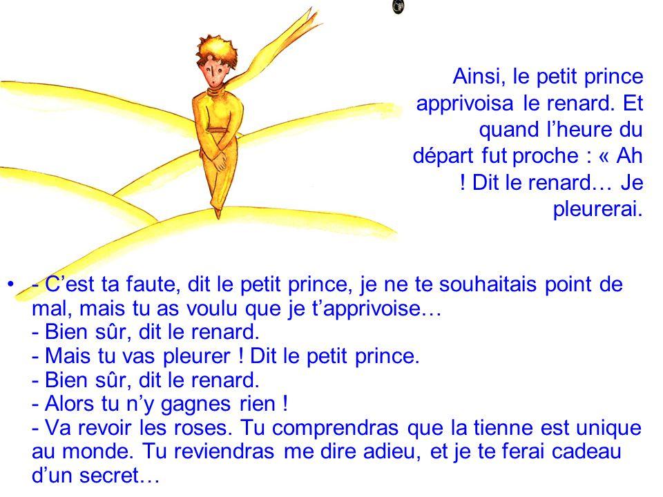 Le petit prince sen fut revoir les roses : « Vous nêtes pas du tout semblables à ma rose, vous nêtes rien encore, leur dit-il.