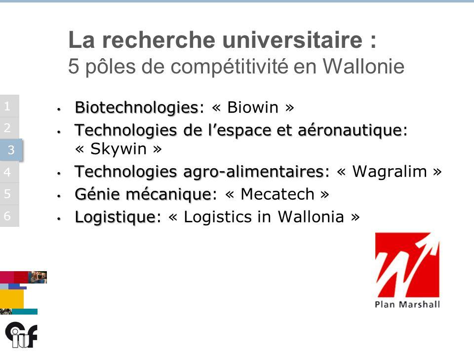 5 3 3 6 1 2 4 La recherche universitaire : 5 pôles de compétitivité en Wallonie Biotechnologies Biotechnologies: « Biowin » Technologies de lespace et aéronautique Technologies de lespace et aéronautique: « Skywin » Technologies agro-alimentaires Technologies agro-alimentaires: « Wagralim » Génie mécanique Génie mécanique: « Mecatech » Logistique Logistique: « Logistics in Wallonia »