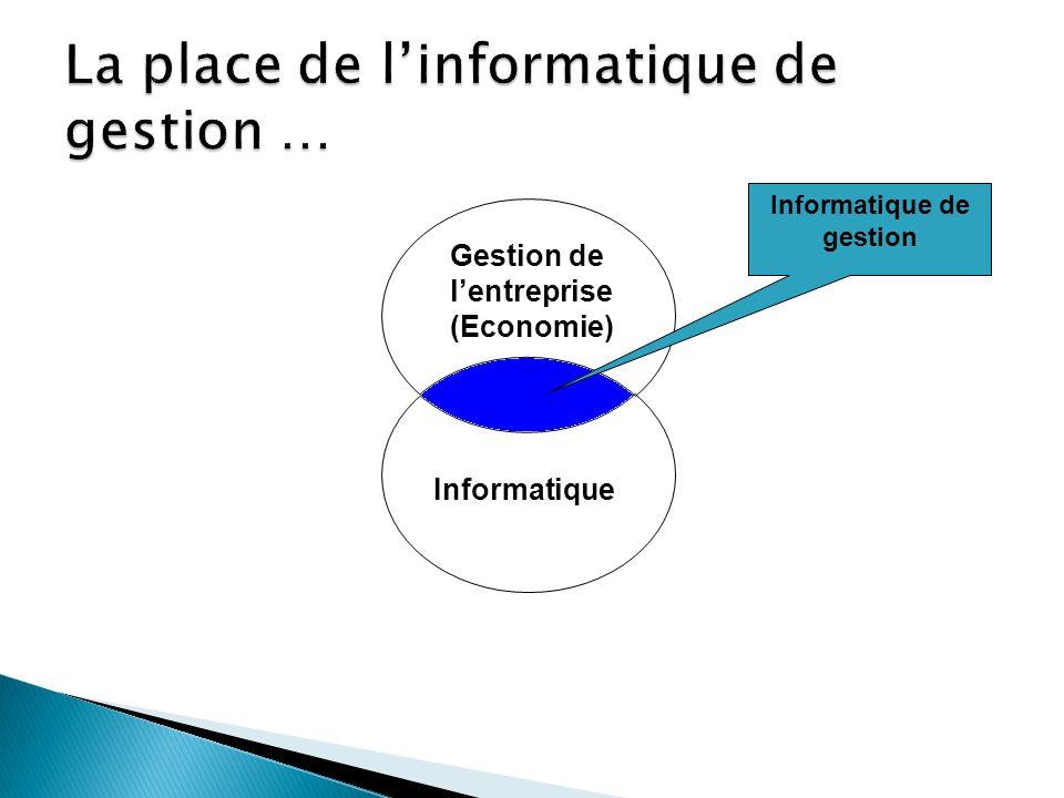 Gestion de lentreprise (Economie) Informatique Informatique de gestion