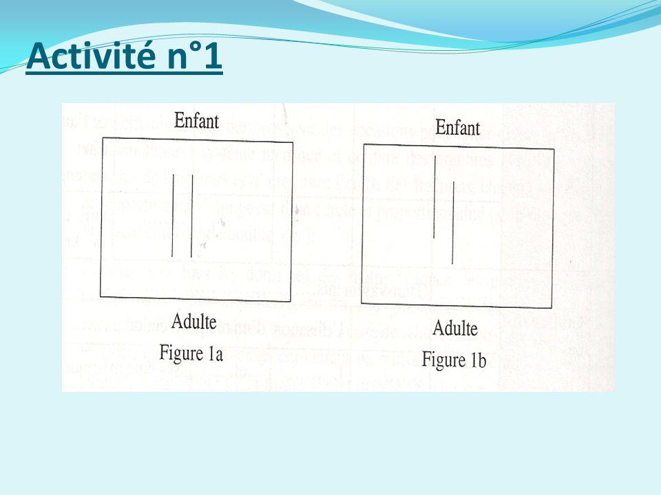 Activité n°1