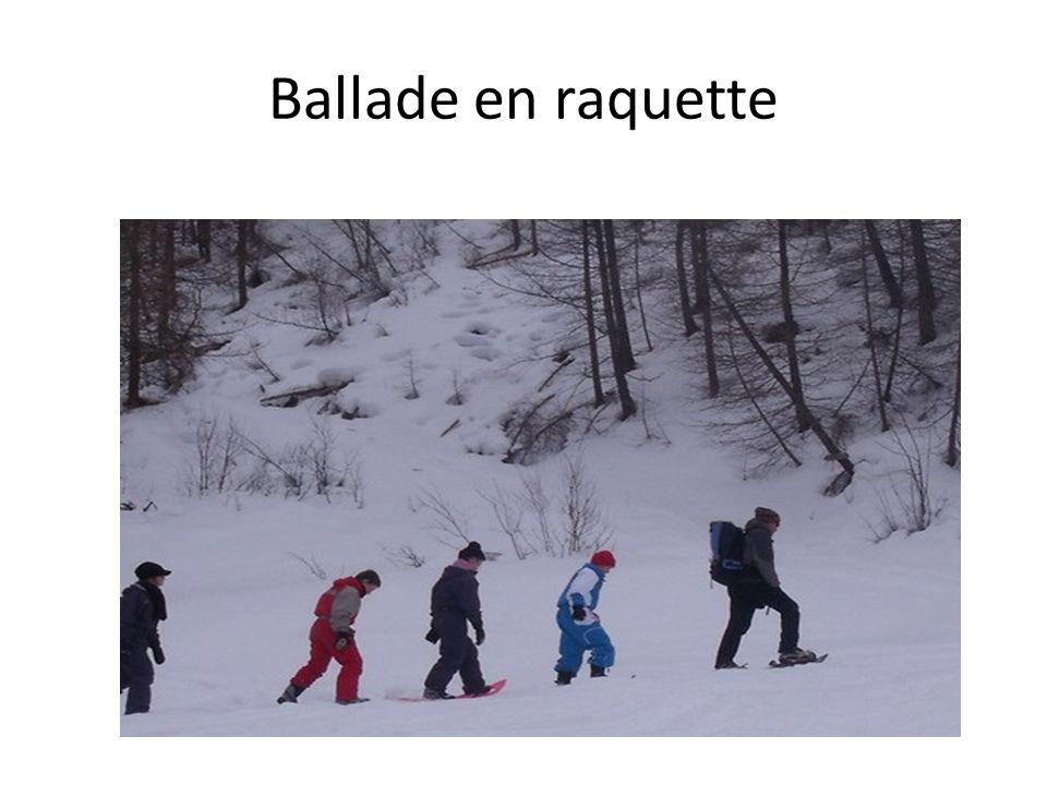 Enquête sur la neige