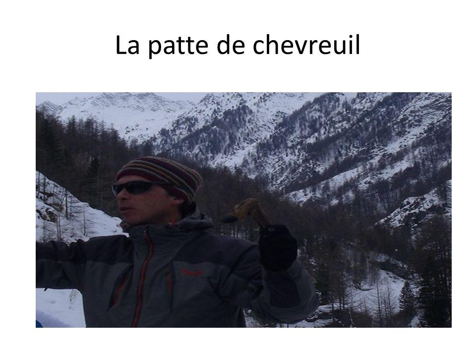 La patte de chevreuil