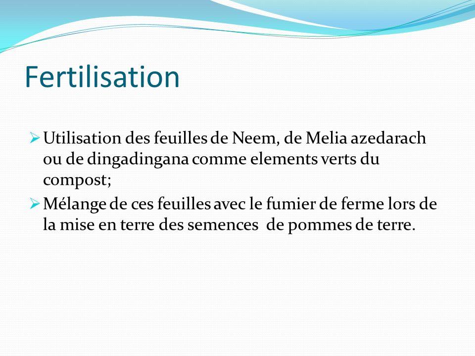 Fertilisation Utilisation des feuilles de Neem, de Melia azedarach ou de dingadingana comme elements verts du compost; Mélange de ces feuilles avec le