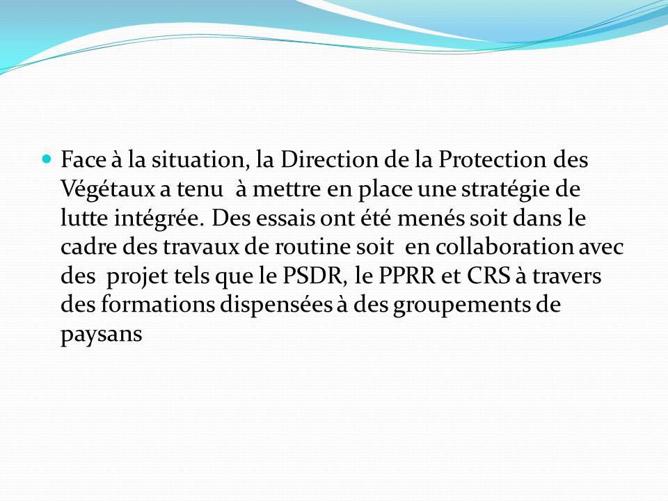 Face à la situation, la Direction de la Protection des Végétaux a tenu à mettre en place une stratégie de lutte intégrée. Des essais ont été menés soi