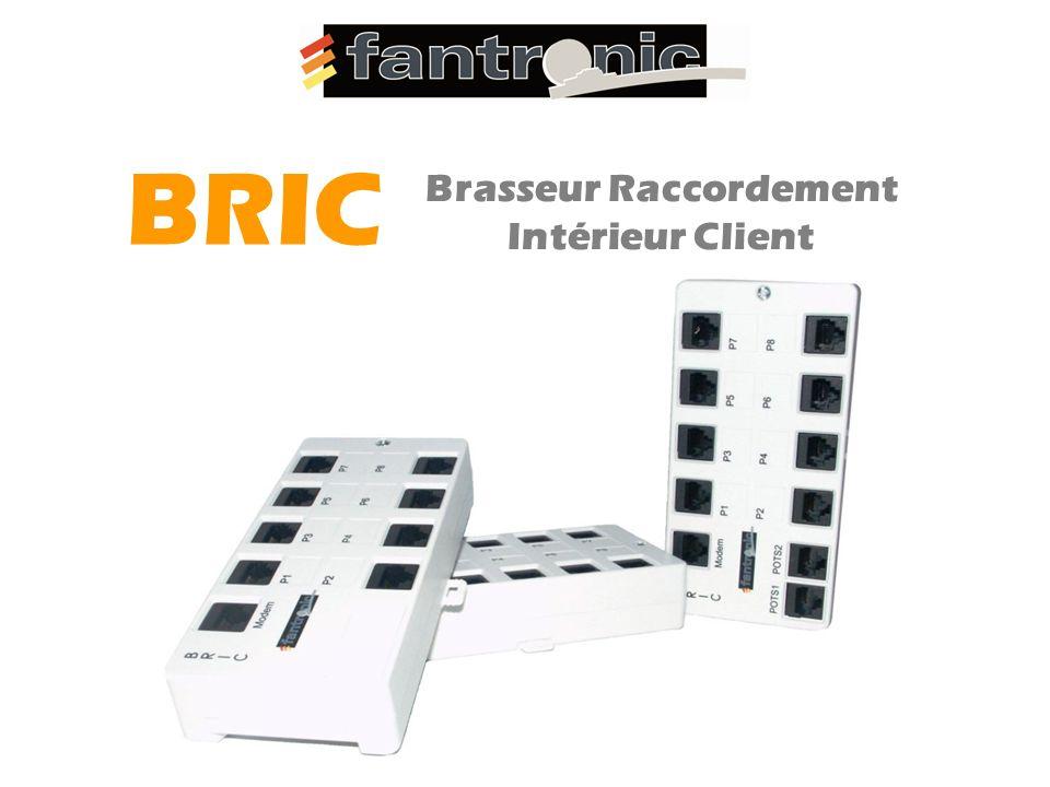 Brasseur Raccordement Intérieur Client BRIC