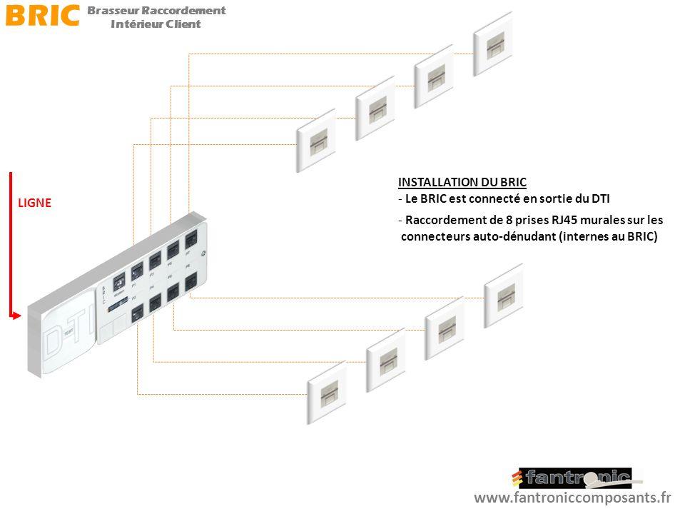 Deux possibilités de raccordement dun Modem BOX sont alors possibles : -1 er cas Installation du Modem BOX près du BRIC - 2 e cas Installation du Modem BOX dans une des pièces du logement (Modem déporté) www.fantroniccomposants.fr BRIC Brasseur Raccordement Intérieur Client