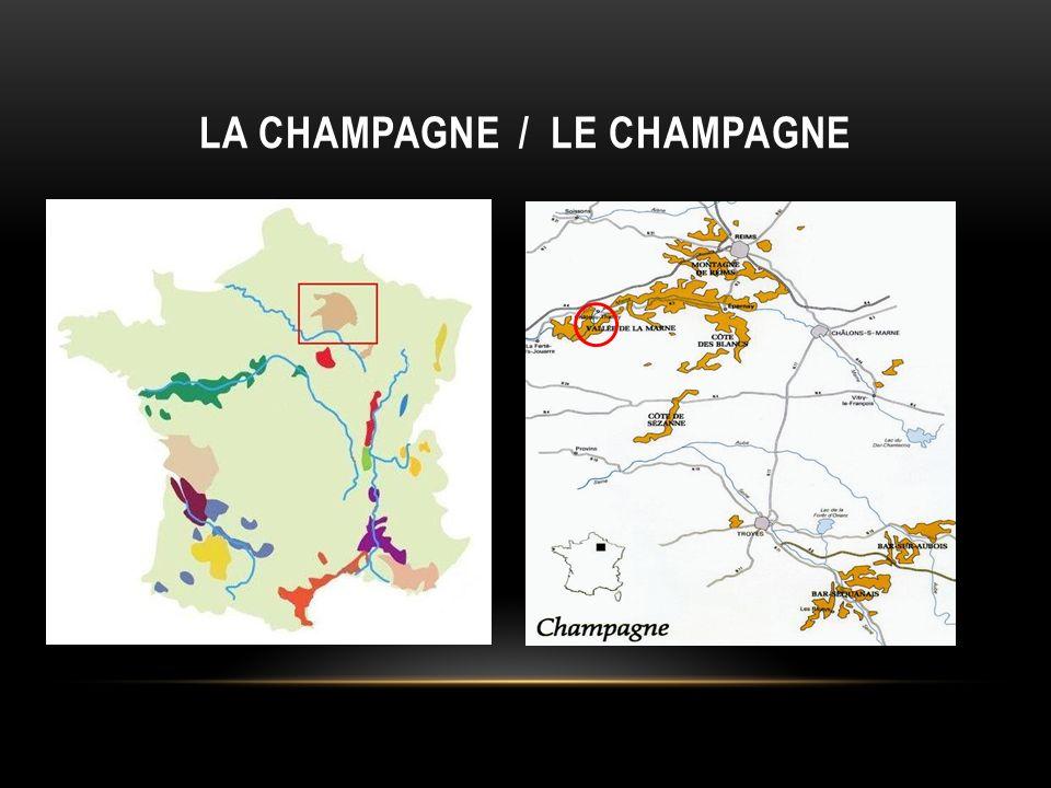 LE VIGNOBLE CHAMPENOIS SÉTEND ENTRE : La Marne (20 000 ha) LAube (5 000 ha) – LAisne (2 000 ha) – La Haute Marne et la Seine et Marne.
