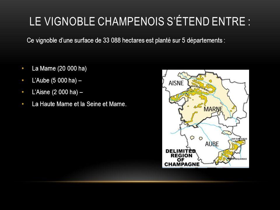 DEUX GRANDES VILLES FONT RAYONNER INTERNATIONALEMENT LE NOM « CHAMPAGNE » : REIMS et les Coteaux de la Montagne de Reims EPERNAY et sa côte des Blancs Mais Chézy sur Marne et le vignoble de la Vallée de la Marne sont également fiers dêtre CHAMPENOIS.