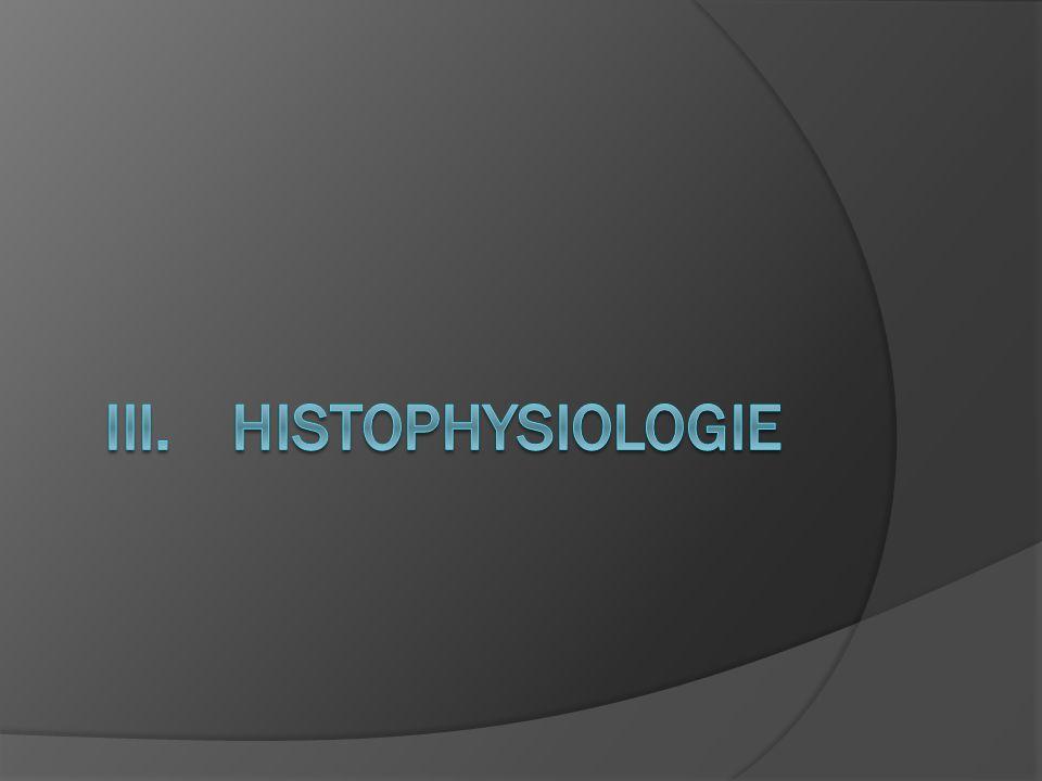 L épiphyse est une horloge biologique interne, sécrète une hormone aminée, la mélatonine, synthétisée à partir de la sérotonine après une exposition à lobscurité et qui cesse lors du passage à la lumière.