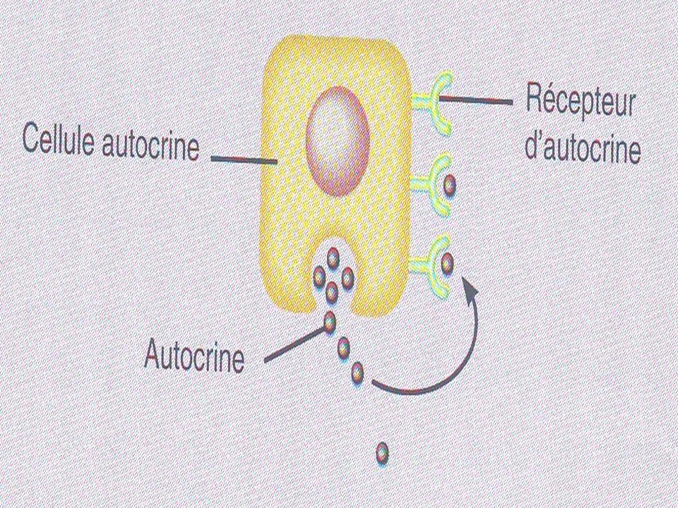 Classification des hormones