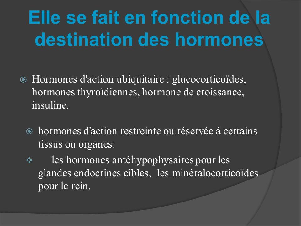 Elle se fait en fonction de la destination des hormones Hormones d'action ubiquitaire : glucocorticoïdes, hormones thyroïdiennes, hormone de croissanc