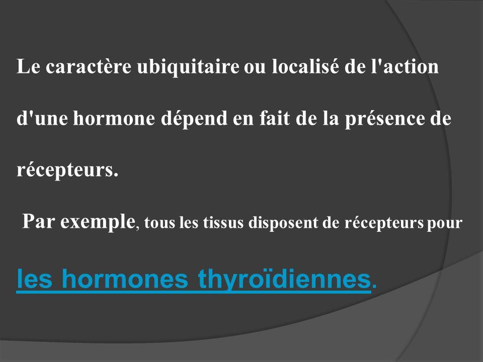 Le caractère ubiquitaire ou localisé de l'action d'une hormone dépend en fait de la présence de récepteurs. Par exemple, tous les tissus disposent de