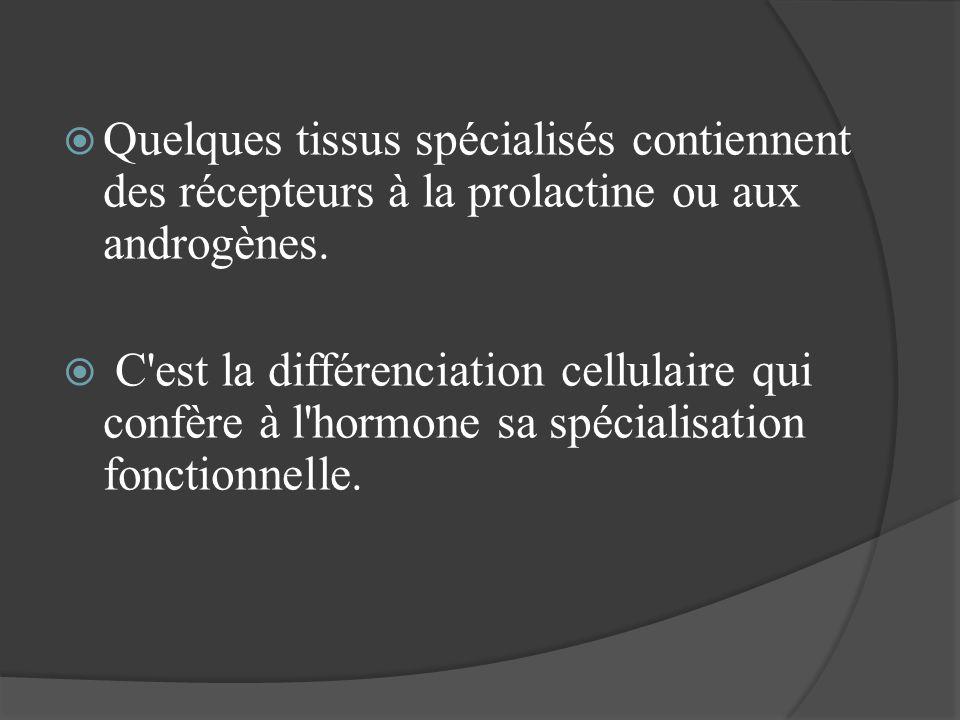 Quelques tissus spécialisés contiennent des récepteurs à la prolactine ou aux androgènes. C'est la différenciation cellulaire qui confère à l'hormone