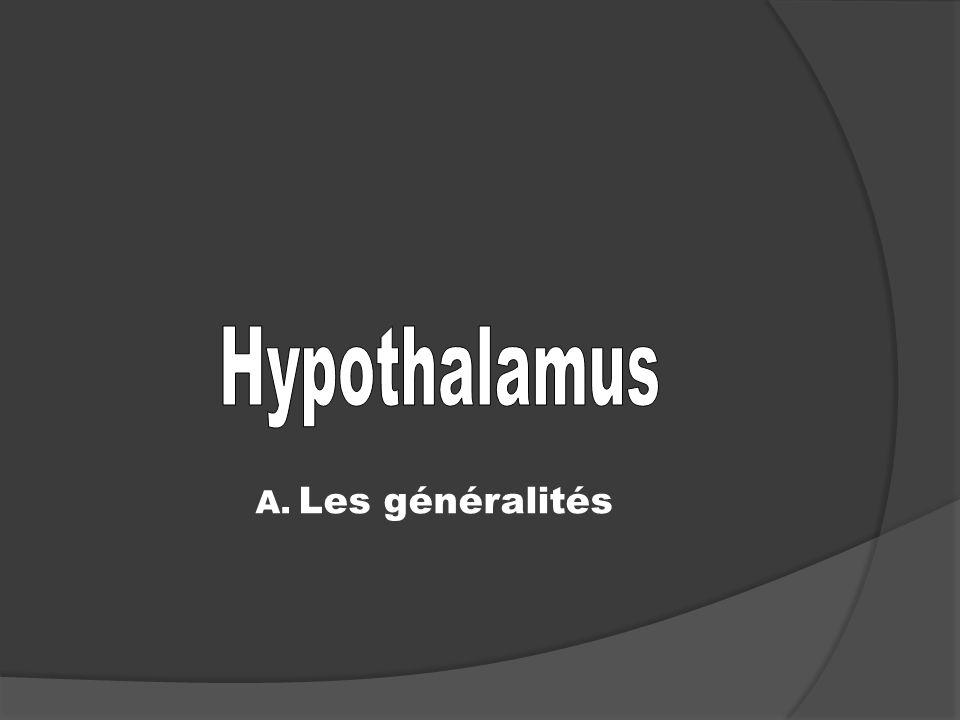 A. Les généralités
