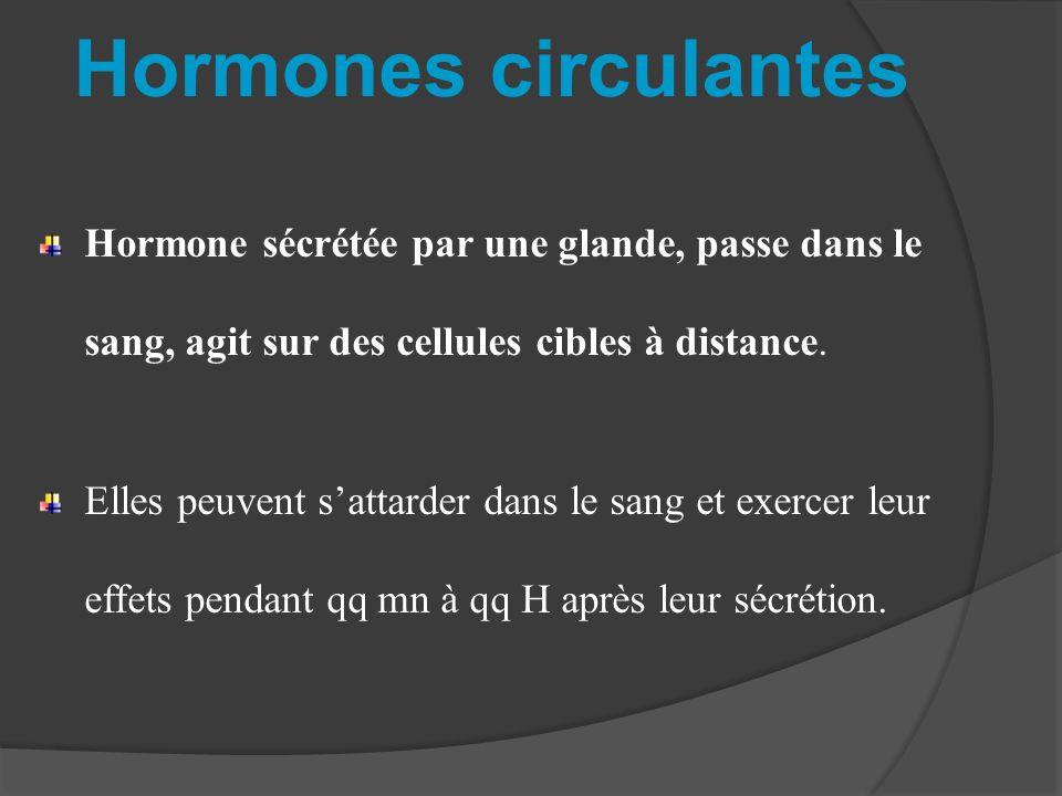 Hormones circulantes Hormone sécrétée par une glande, passe dans le sang, agit sur des cellules cibles à distance. Elles peuvent sattarder dans le san