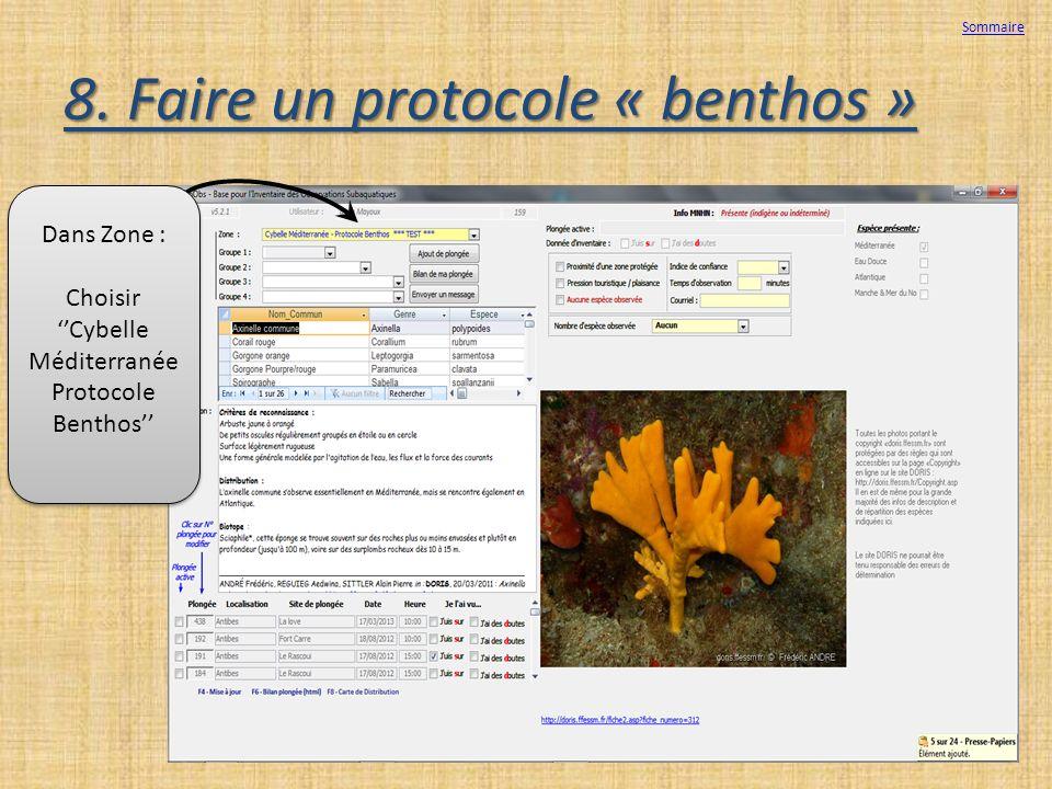 8. Faire un protocole « benthos » Sommaire Dans Zone : Choisir Cybelle Méditerranée Protocole Benthos Dans Zone : Choisir Cybelle Méditerranée Protoco