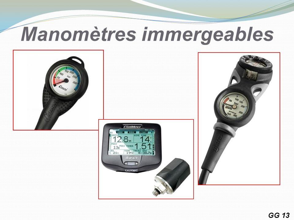 Manomètres immergeables GG 13