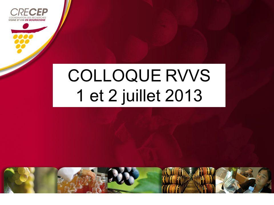 COLLOQUE RVVS 1 et 2 juillet 2013