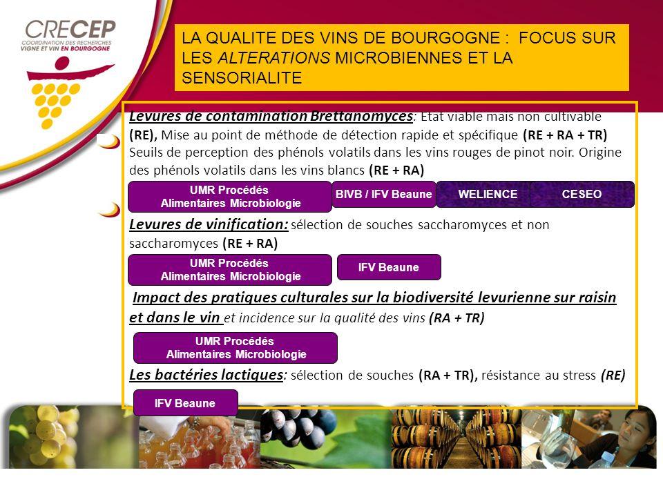 Levures de contamination Brettanomyces : Etat viable mais non cultivable (RE), Mise au point de méthode de détection rapide et spécifique (RE + RA + TR) Seuils de perception des phénols volatils dans les vins rouges de pinot noir.