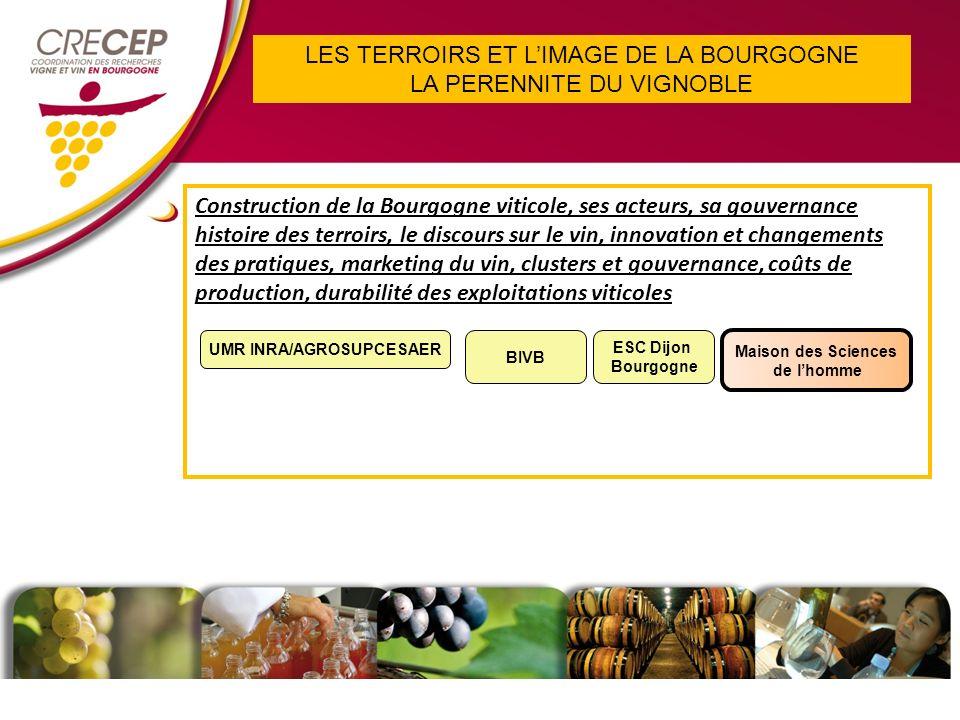 LES TERROIRS ET LIMAGE DE LA BOURGOGNE LA PERENNITE DU VIGNOBLE Construction de la Bourgogne viticole, ses acteurs, sa gouvernance histoire des terroirs, le discours sur le vin, innovation et changements des pratiques, marketing du vin, clusters et gouvernance, coûts de production, durabilité des exploitations viticoles Maison des Sciences de lhomme UMR INRA/AGROSUPCESAER ESC Dijon Bourgogne BIVB