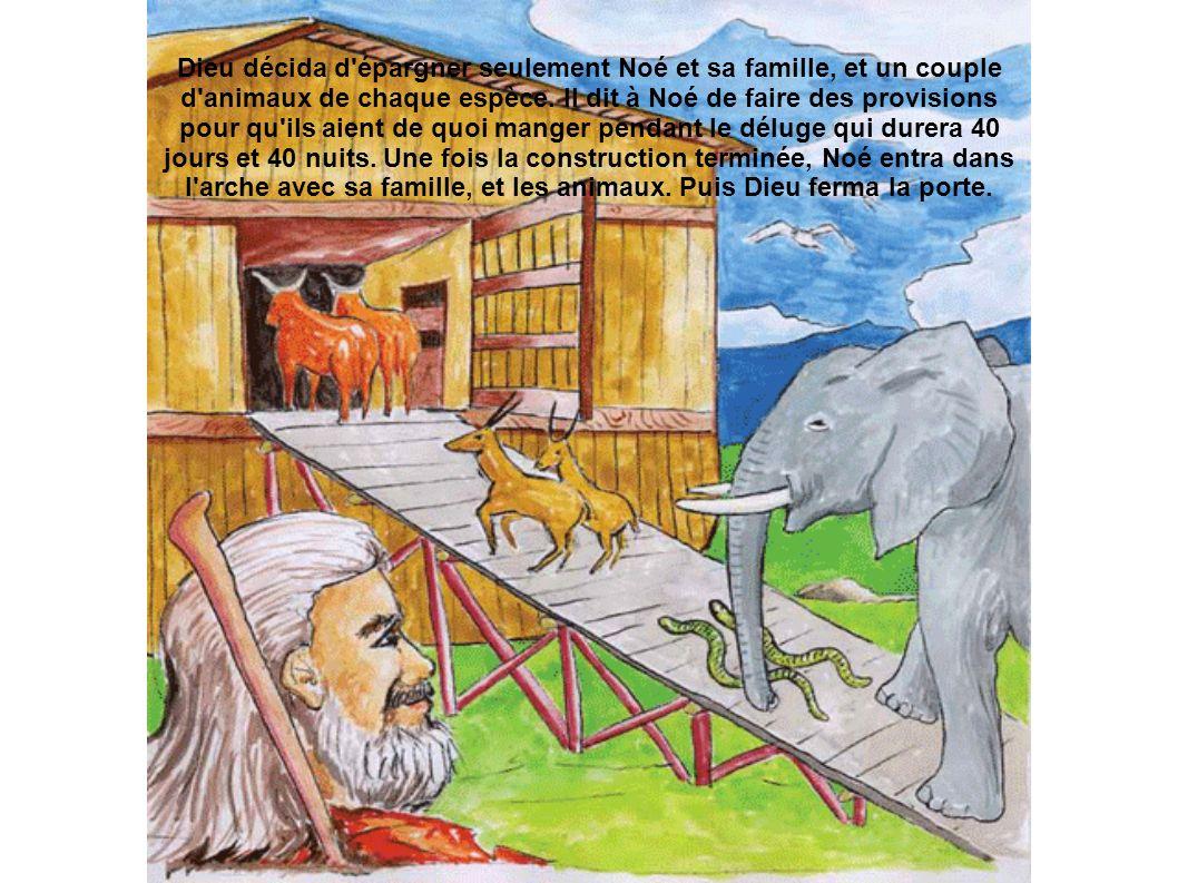 Dieu décida d'épargner seulement Noé et sa famille, et un couple d'animaux de chaque espèce. Il dit à Noé de faire des provisions pour qu'ils aient de