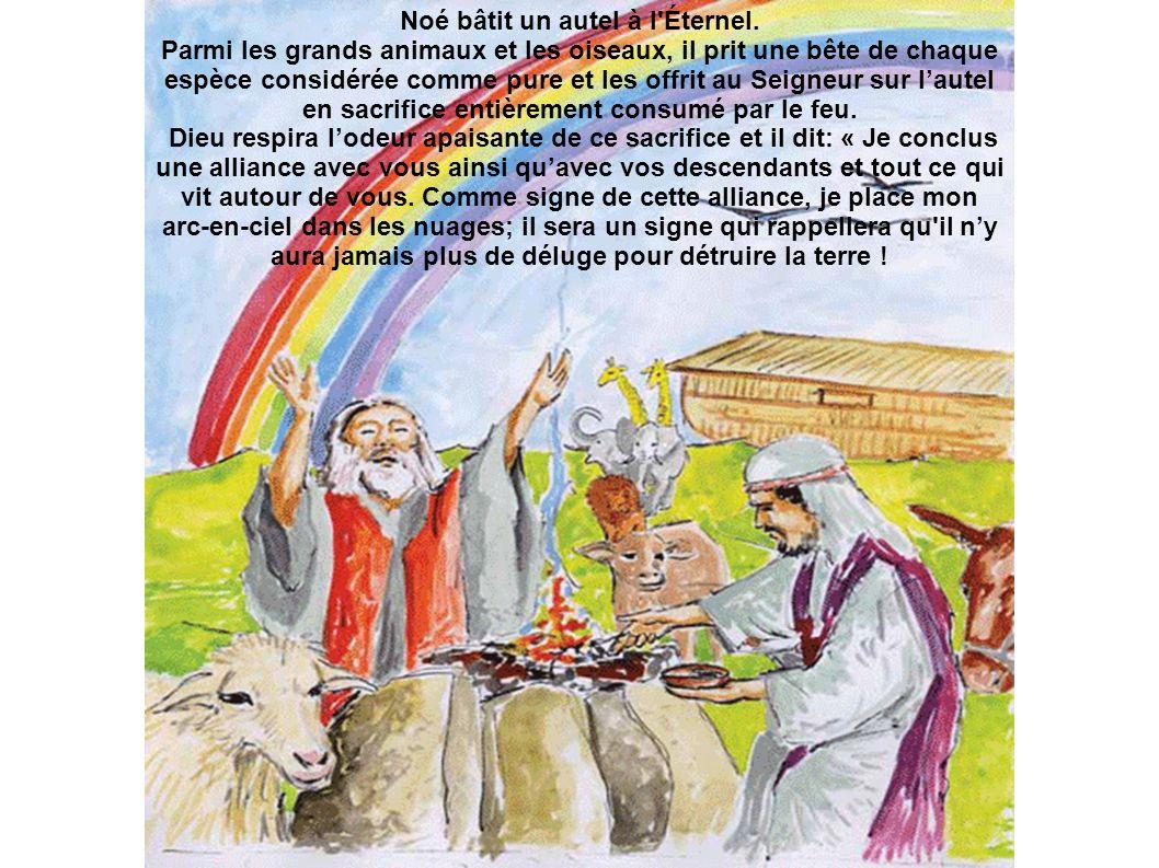 Noé bâtit un autel à l'Éternel. Parmi les grands animaux et les oiseaux, il prit une bête de chaque espèce considérée comme pure et les offrit au Seig