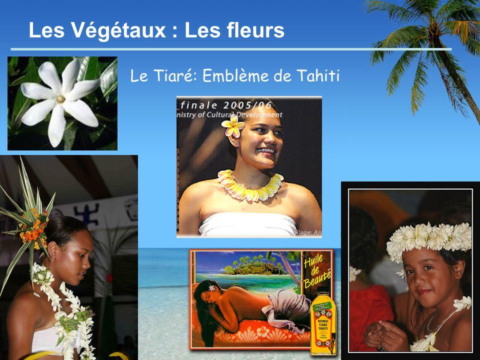 - 9 - Les Végétaux : Les fleurs Le Tiaré: Emblème de Tahiti