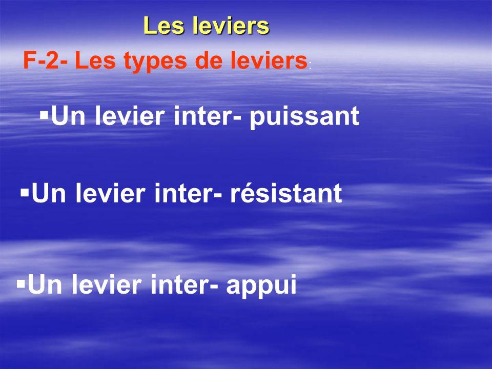Un levier inter- appui Les leviers F-2- Les types de leviers : Un levier inter- puissant Un levier inter- résistant