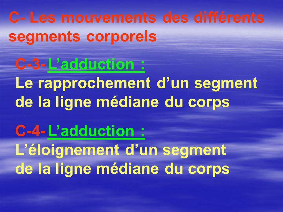 C-4- Ladduction : Léloignement dun segment de la ligne médiane du corps C- Les mouvements des différents segments corporels C-3- Ladduction : Le rappr