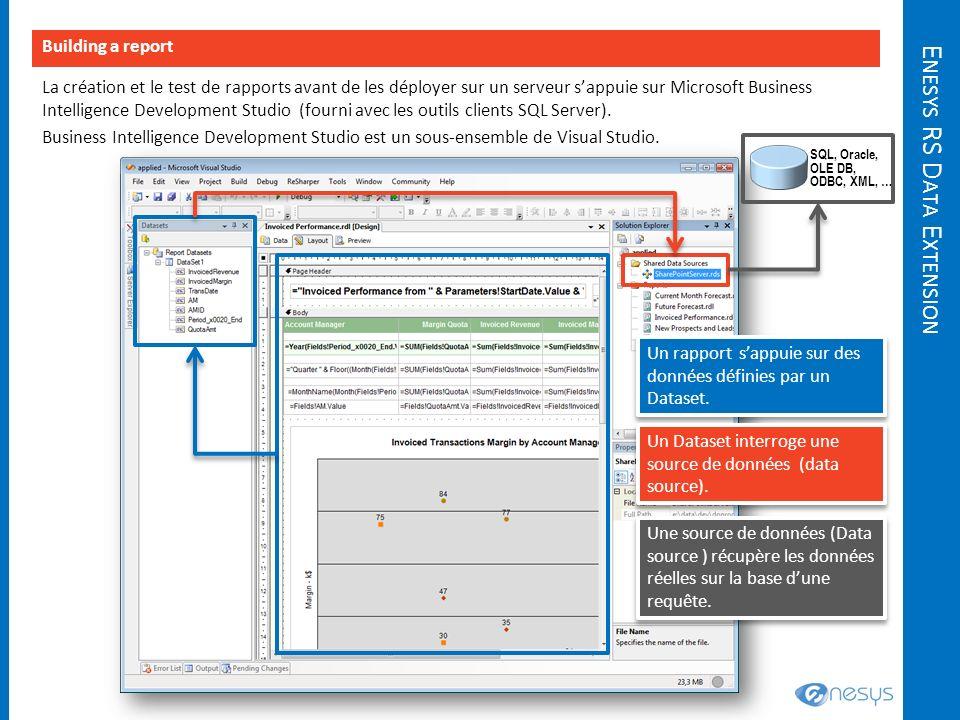 E NESYS RS D ATA E XTENSION La création et le test de rapports avant de les déployer sur un serveur sappuie sur Microsoft Business Intelligence Develo