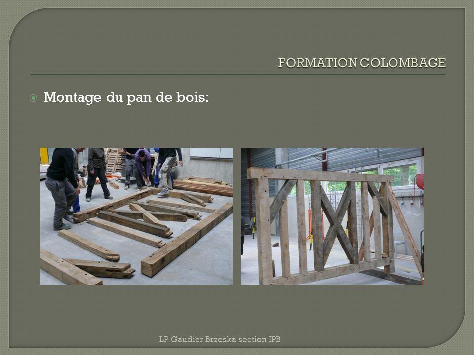 Montage du pan de bois: LP Gaudier Brzeska section IPB