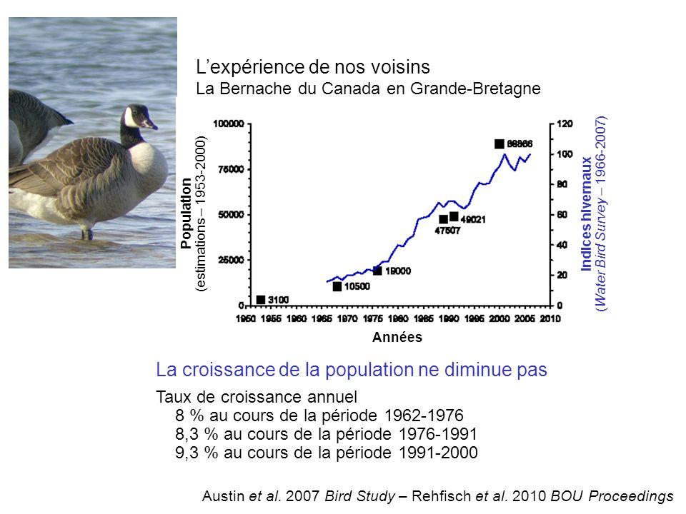 Lexpérience de nos voisins La Bernache du Canada en Grande-Bretagne La croissance de la population ne diminue pas Taux de croissance annuel 8 % au cours de la période 1962-1976 8,3 % au cours de la période 1976-1991 9,3 % au cours de la période 1991-2000 Population (estimations – 1953-2000) Indices hivernaux (Water Bird Survey – 1966-2007) Années Austin et al.