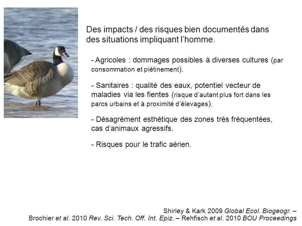 Des impacts / des risques bien documentés dans des situations impliquant lhomme.