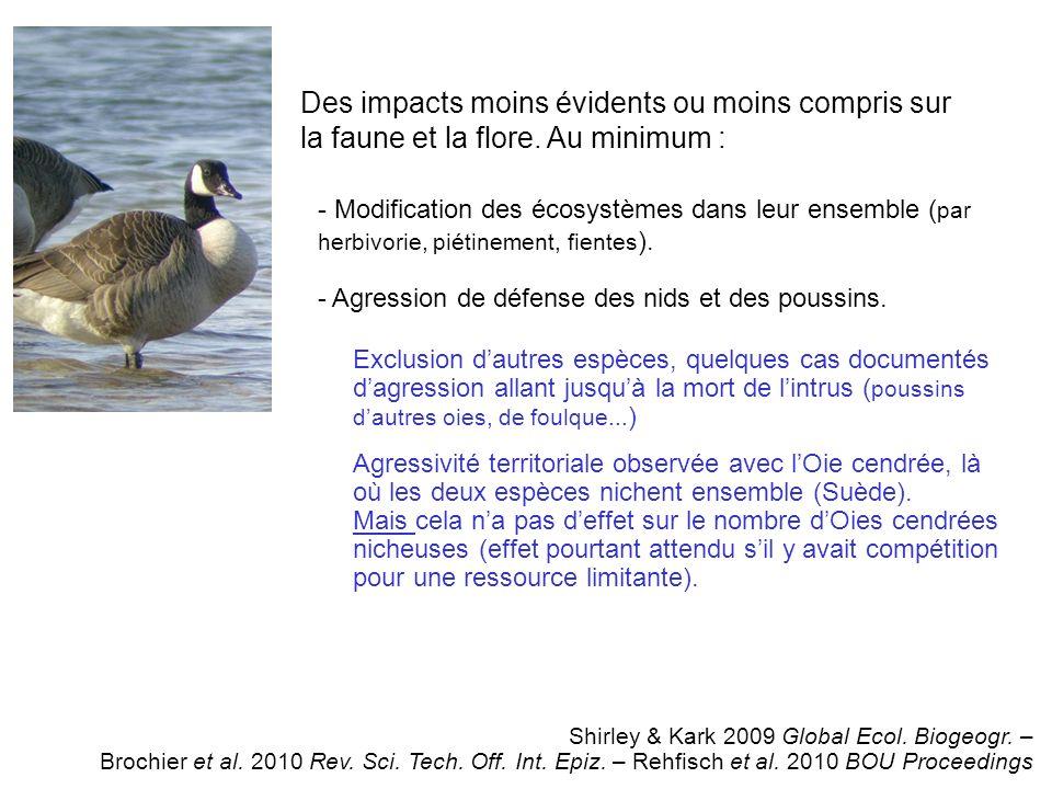 Des impacts moins évidents ou moins compris sur la faune et la flore.