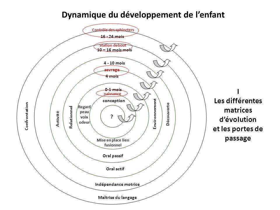 I Les différentes matrices dévolution et les portes de passage Dynamique du développement de lenfant .
