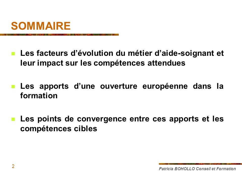 SOMMAIRE Les facteurs dévolution du métier daide-soignant et leur impact sur les compétences attendues Les apports dune ouverture européenne dans la f